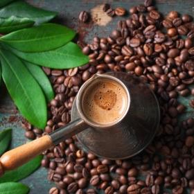 Descubre lo dulce y amargo del café