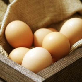 Necesitas calcio? Consume cáscara de huevo!
